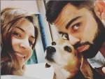 Virat Kohli mourns death of his dog Bruno, posts a heart-touching note on social media