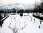 Boosting winter sports: Srinagar witnesses first-ever snowshoe run