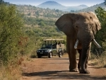 Experience the breathtaking Bakubung Bush Lodge on foot in South Africa