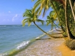 Minister updates Lok Sabha about promotion of coastal tourism in India