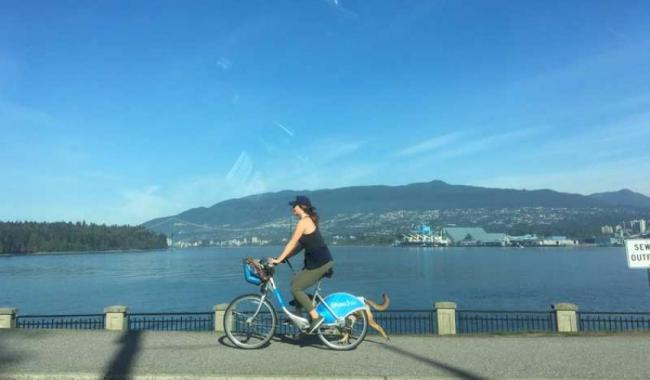 Vancouver is your greenest city to visit in 2019