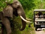 How do I prepare for a trip to South Africa?