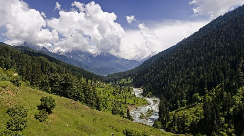 Jammu and Kashmir: Tourists start to return to Pahalgam as govt eases COVID-19 curbs