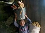 UN marks World Day Against Child Labour