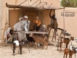 Mali: UN heads north to push for ceasefire