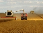 World food prices hit lowest level in almost seven years: FAO