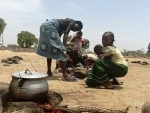 Fallout from Boko Haram violence fastest growing crisis in Africa: UN relief official