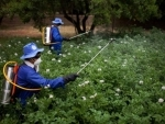 UN agencies release guidelines for countries on pesticide legislation and labelling