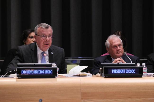 Cutting crime important to sustainable development: UN Assembly
