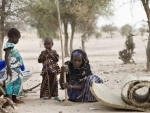 Thousands continue to flee Boko Haram attacks on Niger town – UN refugee agency
