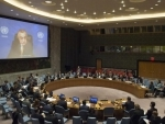 Kosovo situation yielding 'fewer results than hoped' in 2016, UN envoy tells Security Council