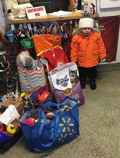 Toronto: Heroic efforts of 2-year-old child to raise $500 for Brain Cancer Research