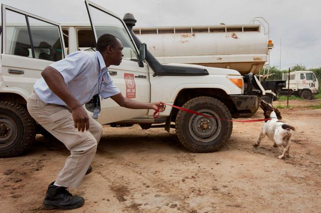 South Sudan: New team of explosive detection dogs arrives at UN mission