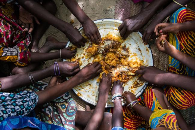 Agriculture and food system transformation needed on pathway to zero hunger – Ban