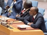 Guinea-Bissau: Sustaining economic growth requires political stability, says UN envoy