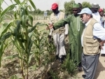 Lake Chad Basin crisis is both humanitarian and ecological – UN agriculture agency