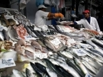 Join global treaty to root out the scourge of illegal fishing, urges UN food security agency