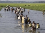 UN Security Council calls on Myanmar to end excessive military force in Rakhine state