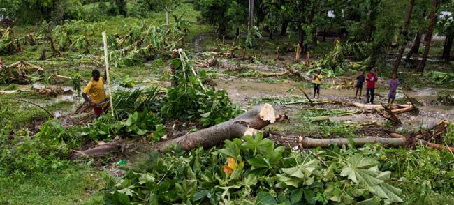 Haiti: UN agricultural development fund supports hurricane-affected farmers with $11 million