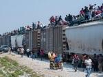 Migrant deaths along US-Mexico border remain high despite drop in crossings – UN agency
