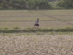 Hunger rates remain high amid conflict, climate shocks, warns UN food security report