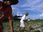 After decade of progress, rural areas of Latin America, Caribbean slide back into poverty – UN report