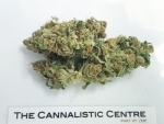 More Canadians smoking pot compared to 1985: Statistics Canada