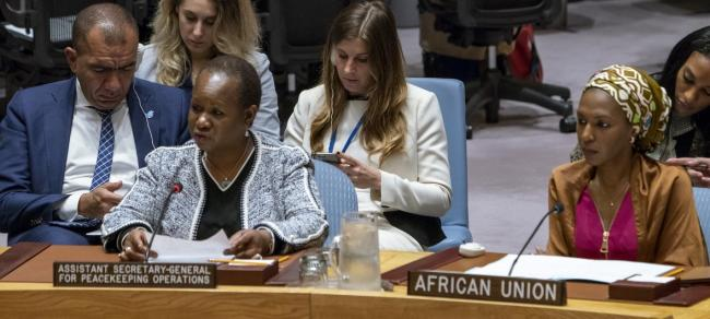 Peace and security challenges in Africa's Sahel region require 'holistic approach', says UN official