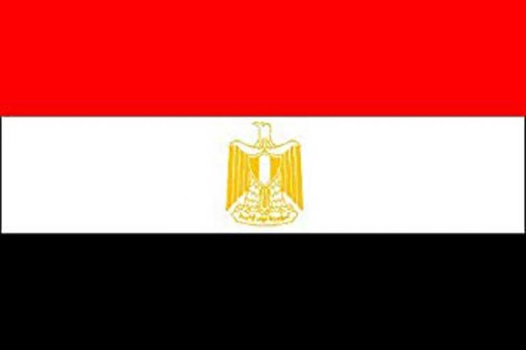 Egypt denounces triple suicide attacks in Nigeria