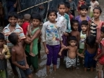 ICC gives greenlight for probe into violent crimes against Rohingya
