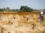 Delhi Declaration: Countries agree to make 'land degradation neutrality' by 2030, a national target for action