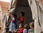 At most 117 children die in battered camp in northeastern Syria: watchdog