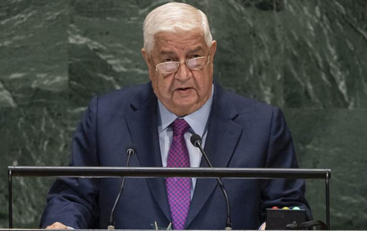 Syrian crisis is 'clearest example' of foreign investment in terrorism, Deputy Prime Minister says at UN