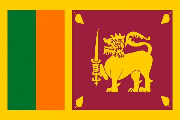 Sri Lanka aims to increase investments from key markets including China