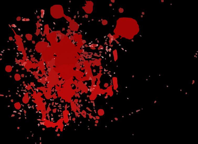 Bangladesh: Local Awami League leader shot dead