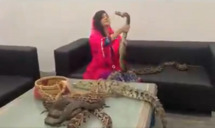 Pakistani singer gets ready with snakes, crocodiles to teach Modi a lesson for Kashmir, Twitter in splits