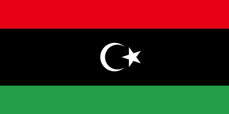 Libya's eastern-based government shuts border to ward off coronavirus
