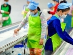 New UN report offers blueprint for greener, more resilient world of work
