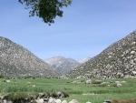 Afghanistan's Nangarhar car bomb blast: ISI link suspected