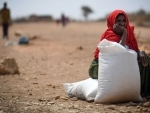As famines of 'biblical proportion' loom, Security Council urged to 'act fast'