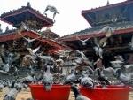 Chinese encroachment on Nepali land: Kathmandu witnesses demonstration outsident Chinese embassy