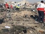 Iran Ukraine jointly decipher black box of crashed Ukrainian plane: Iranian minister