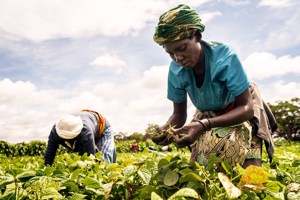 UN report sends 'sobering message' of deeply entrenched hunger globally