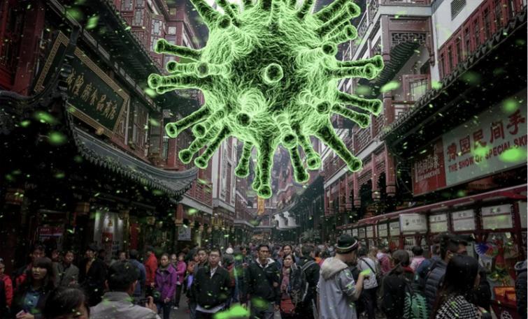 Novel coronavirus vaccine starts animal trials