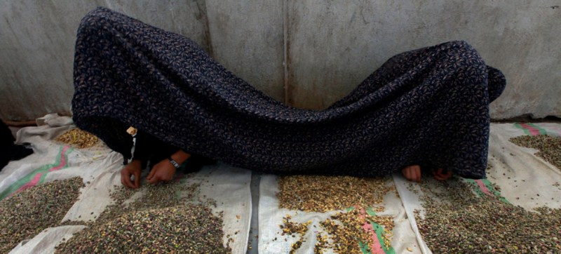 Improved Afghan law still fails victims of sex crimes and violence against women, UN report finds