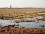 UN agencies shocked by deaths near Belarus-Poland border