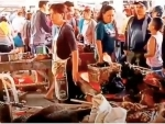Thousands of wild animals were sold at Wuhan markets in months before Covid-19 outbreak: Reports