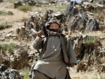 At least 20 dead, 90 injured over four days of fighting in Afghanistan's Herat region: Reports