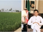 Pakistan: Imran Khan govt expected to face new challenge as farmers plan protest