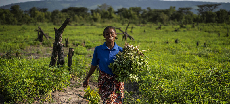 FAO head urges G20 to invest in a healthy planet for healthy food